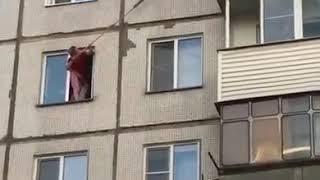 В Новосибирске женщина, вооружившись швабрами, спасла котенка, едва не выпавшего с 5-го этажа