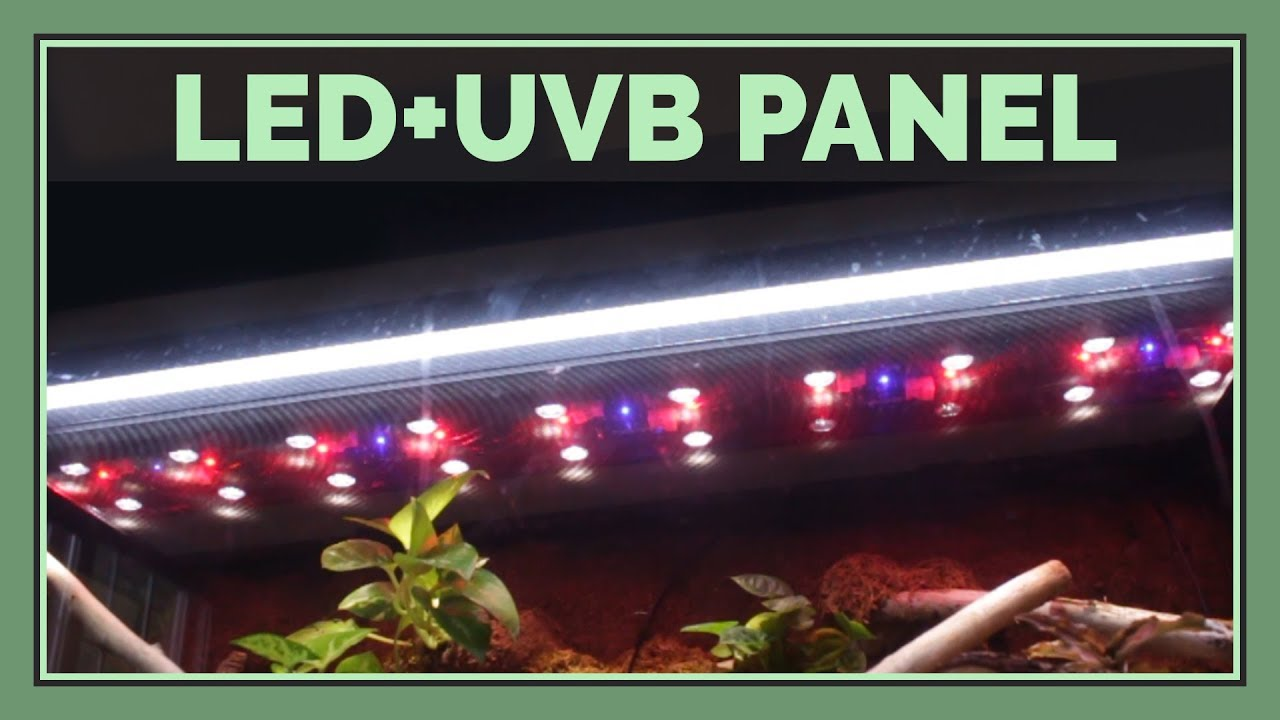 Zoo Med Reptisun Led Uvb Panel Review An In Depth Look