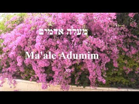 Maale Adumim