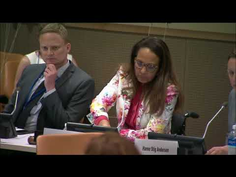 Nordic seminar on disability statistics at the conference of state parties of the UNCRPD June 2017