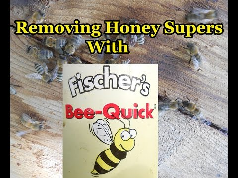 Removing Honey Supers With Fischer's Bee Quick
