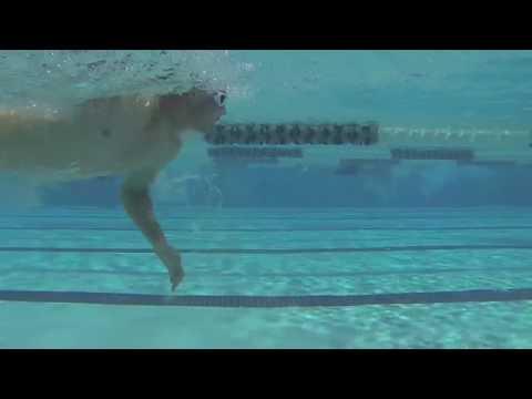 Harry Wiltshire Video Analysis