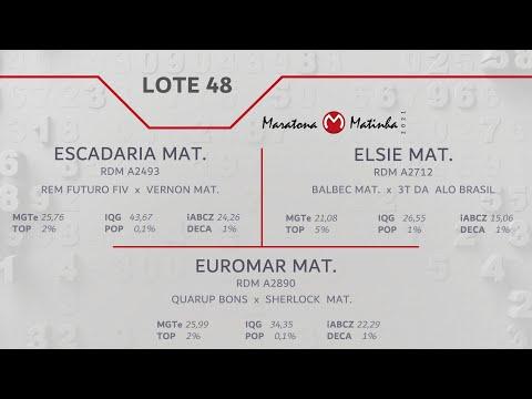 LOTE 48 Maratona Matinha