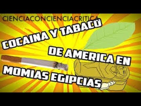 MOMIAS EGIPCIAS CON TABACO Y COCA / CIENCIACONCIENCIACRITICA