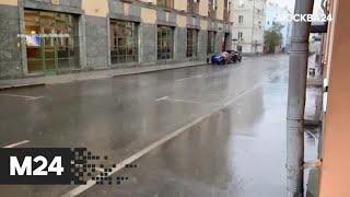 """""""Погода"""": теплая и дождливая погода ожидается в столичном регионе - Москва 24"""