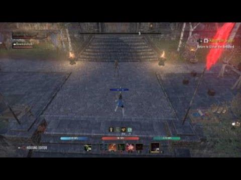 The Elder Scrolls Online: dps wearing briar heart,spriggans,and velidreth  monster sets