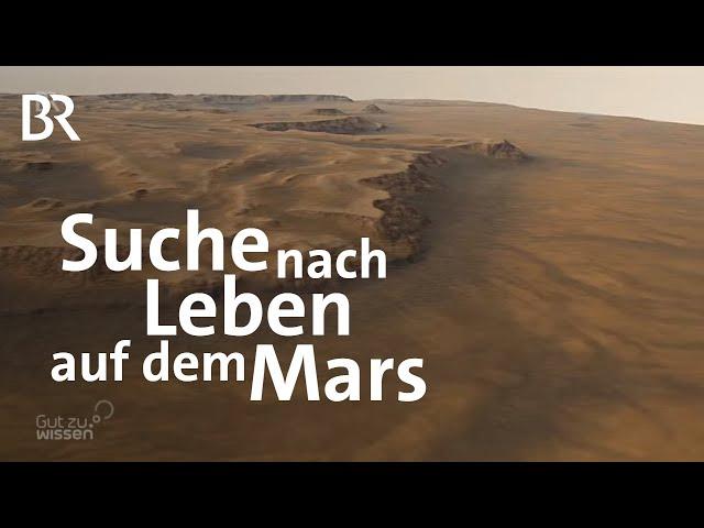 Mars-Mission: Spuren von Leben in Steinen finden | Gut zu wissen | BR