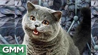 Repeat youtube video 5 Weirdest Websites on the Internet Pt. 1