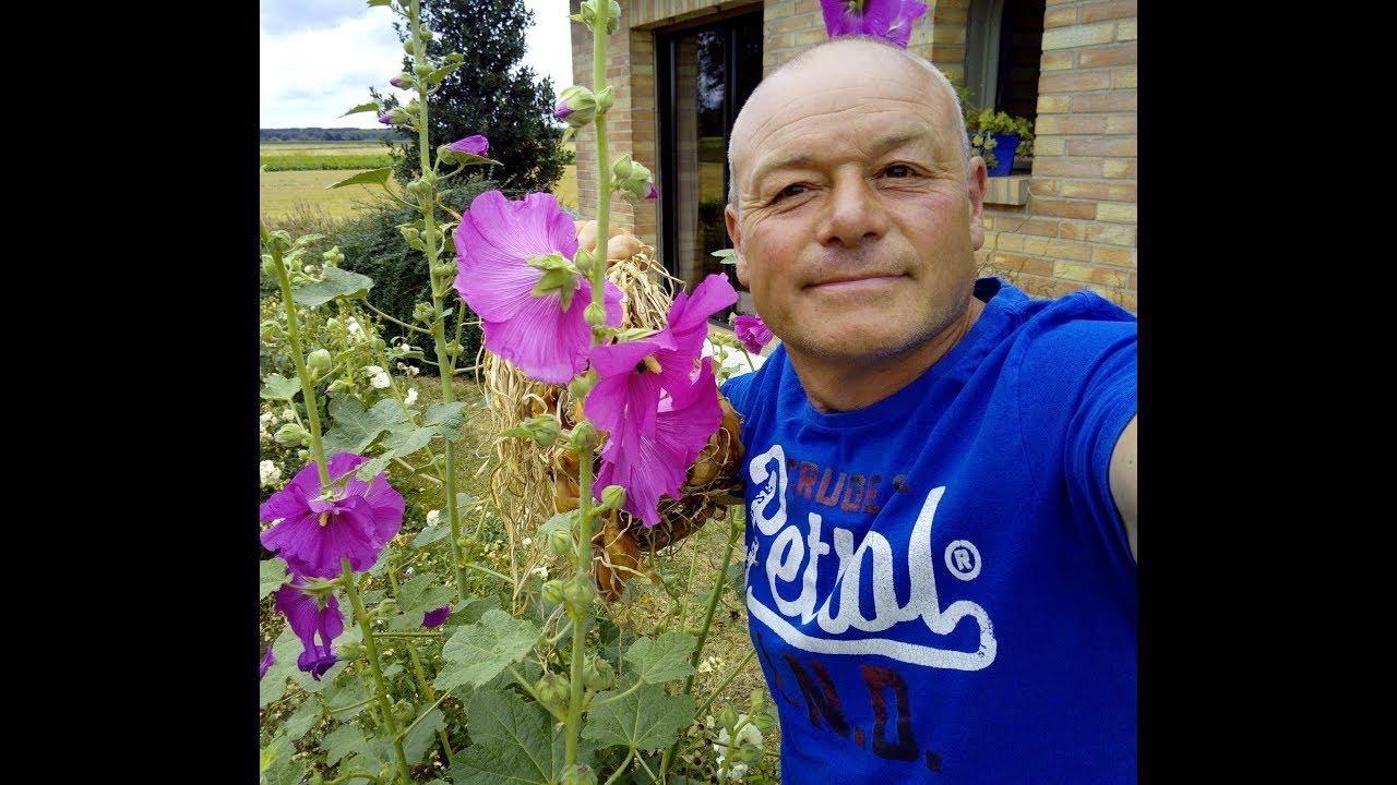 Que faire au jardin en septembre bouture et conseils youtube - Que faire au jardin en septembre ...