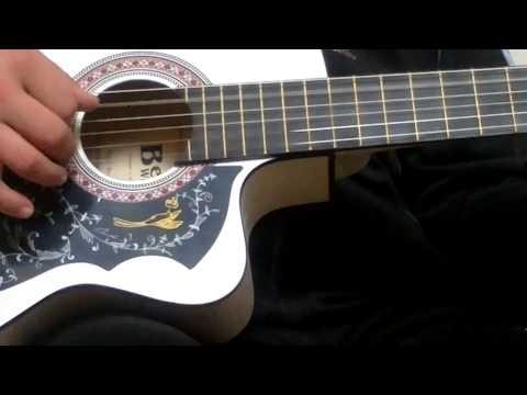 Дельфинёнок гитара