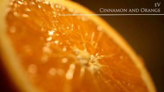 14 - Ian Pooley & Majik J - Piha (Original Mix) - [eV - Cinnamon and Orange]