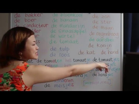 LEARN DUTCH/ NETHERLANDS & INDONESIAN/ BAHASA INDONESIA [IN ENGLISH] #41 THE 1.0
