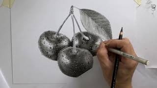 CHERRY DRAWING WITH CHARCOA AND PENCILS /  DP TRUONG