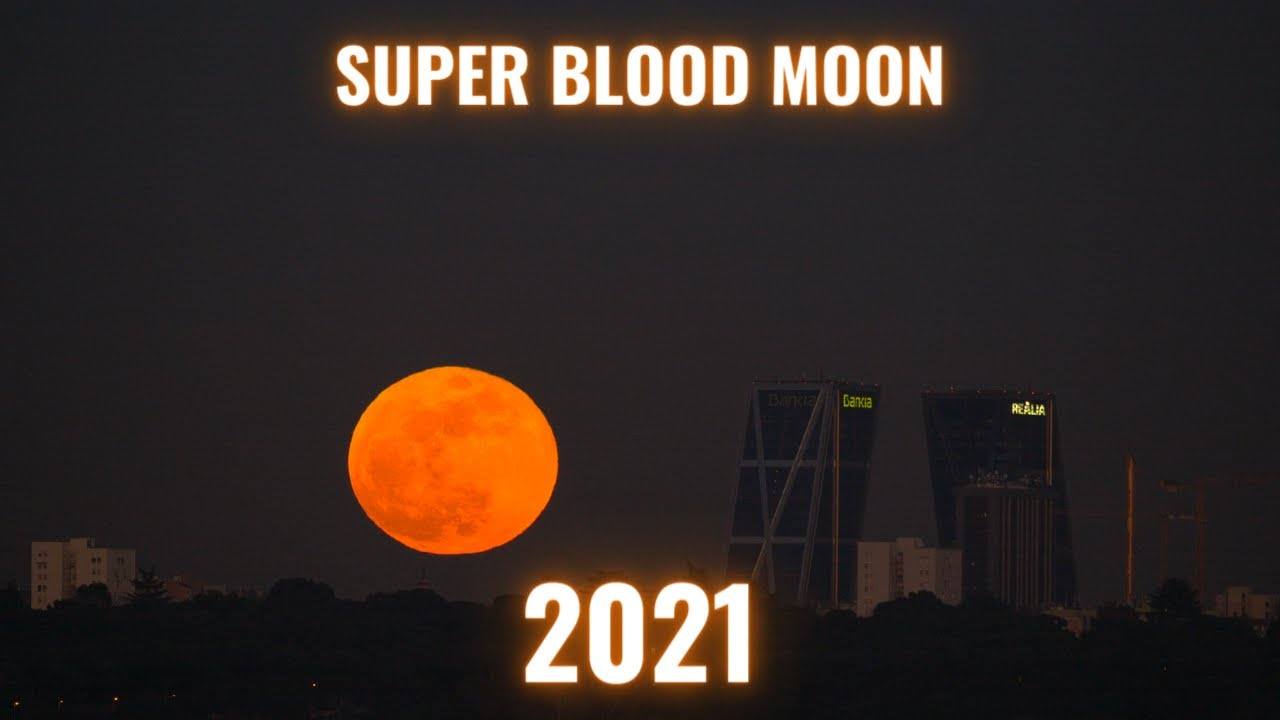 Download Don't Miss This Year's Rare Super Blood Moon!