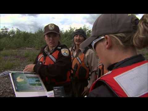 Ecological Services Program - U.S. Fish & Wildlife Service