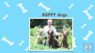 Dog Obedience Classes Los Angeles Call (661) 803-8461 Santa Clarita Dog Obedience