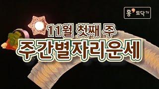 [홍테라타로/11월첫째주주간별자리운세]11월2일 ~ 8일 11월 첫째주 주간별자리운세
