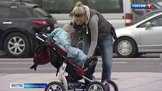 Стартовал проект «Калининград — большая семья»