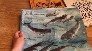 Читаем детям.Обзор детских книг о животных