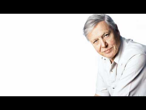 David Attenborough on Desert Island Discs: December 25th 1998