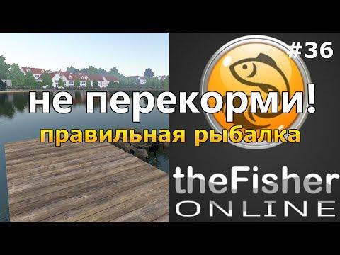 видео: КАК ПРАВИЛЬНО ЛОВИТЬ С ПРИКОРМКОЙ? + Обзор обновления theFisher Online [Стрим Обзор]