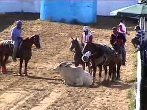 campeonato A valle de la pascua 2010 tercera parte