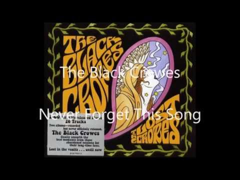 The Black Crowes - Never Forget This Song (HD)