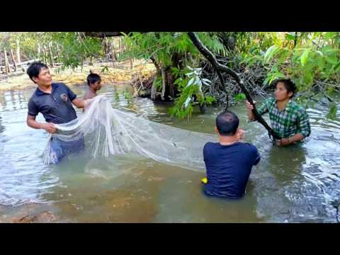 Top 10 AMAZING Net Fishing - My Village Fishing at Kampong Thom Province In Cambodia #6