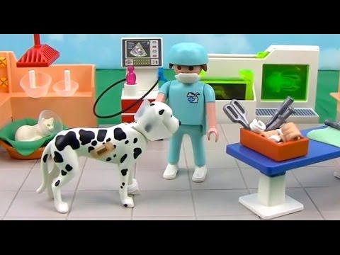 Playmobil City Life Vet Clinic Extravagana Part 1 Youtube