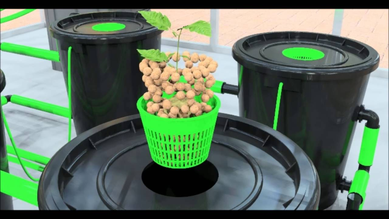 alien rdwc hydroponic system operation video dwc youtube. Black Bedroom Furniture Sets. Home Design Ideas