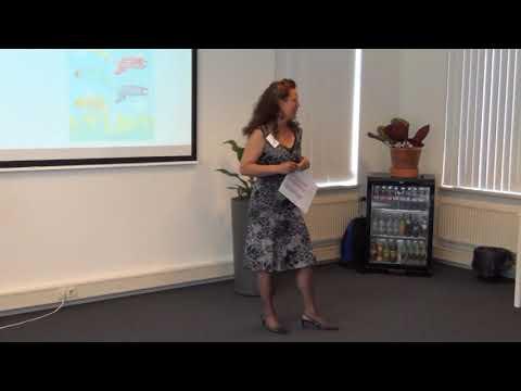 Presentatie Storytelling