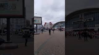 Цепь солидарности. Минск, Комаровский рынок