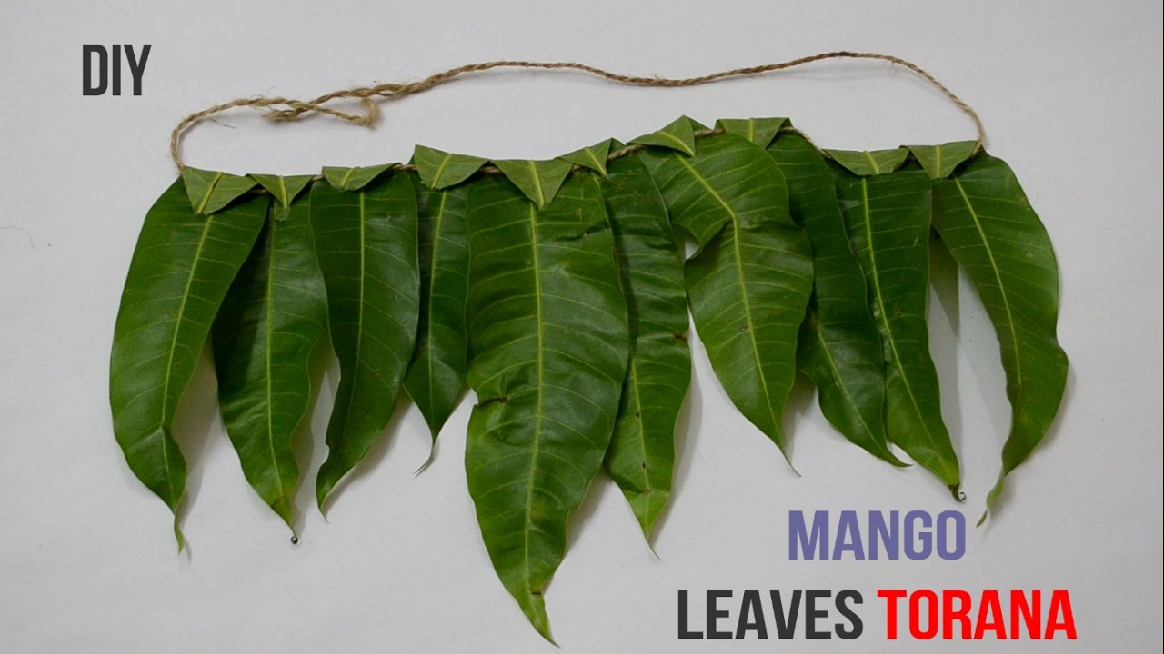 Mango Leaves Toran Ugadi Creative Indian Arts 8