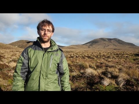 Winter in the Subantarctic: Antipodes Island terrestrial ecology