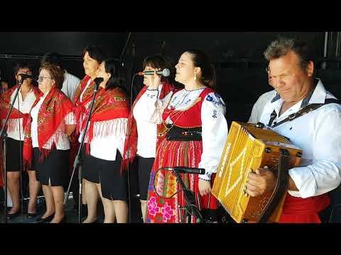 Cantares do Alvarinho
