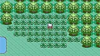 Where To Catch Wobbuffet In Pokemon Emerald, Ruby, Sapphire