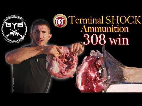 DRT 308winTERMINALSHOCKAmmo vsPork Shoulder & BRICK [GY6Ballistic Test #23]