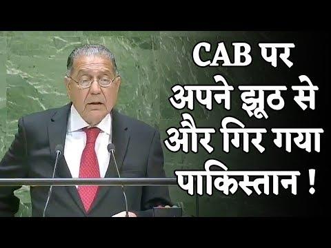 भारतीय मुस्लिमों को भड़काने की कोशिश में और नीचे गिर गया Pakistan, UN में दिखाई औकात !