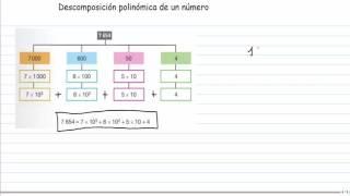 Descomposición polinómica