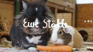 eure-stlle-folge-10-artgerechte-kaninchenhaltung-cagetour