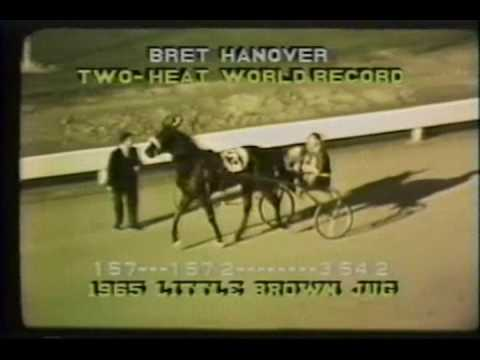 Image result for bret hanover racehorse little brown jug
