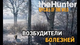 the hunter call of the wildMedved Taiga  Возбудители болезней