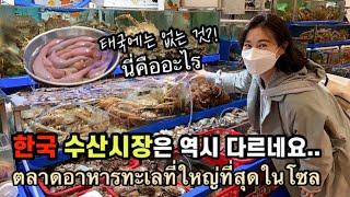 ไทย) 서울 첫 나들이, 노량진 수산시장 뿌시기 하지…