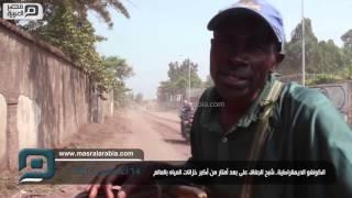 مصر العربية |الكونغو الديمقراطية..شبح الجفاف على بعد أمتار من أكبر خزانات المياه بالعالم