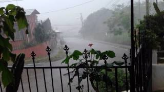 Costa Rican Afternoon,  Rainy Season Edition