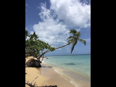 Grand Bahia Principe El Portillo - Samana August 2019