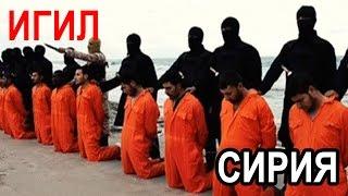 ИГИЛ 2016  СИРИЯ НОВОЕ