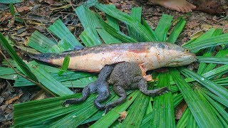 Amazing Big Frog In Big Fish Stomach then make Fish Salad Eating Delicious