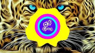 Gambar cover Tiger Dhun (BENJO MIX) DJ SANJAY DJ SIPUN