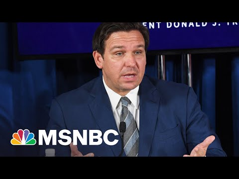 Gov. DeSantis' Anti-Protest Law Doesn't Appear To Apply To Protests He Supports